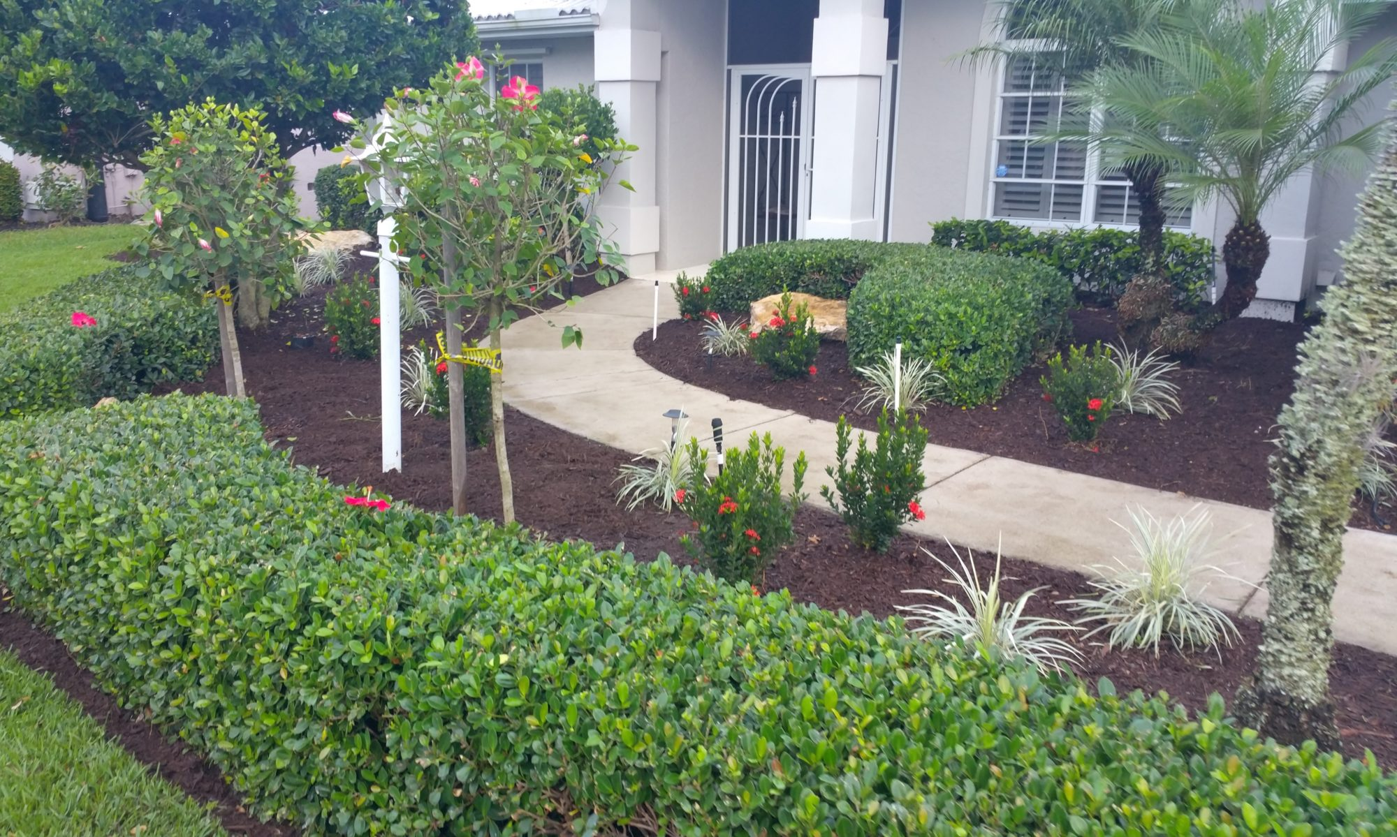 Aunt Bees Lawn Care Services in Venice FL